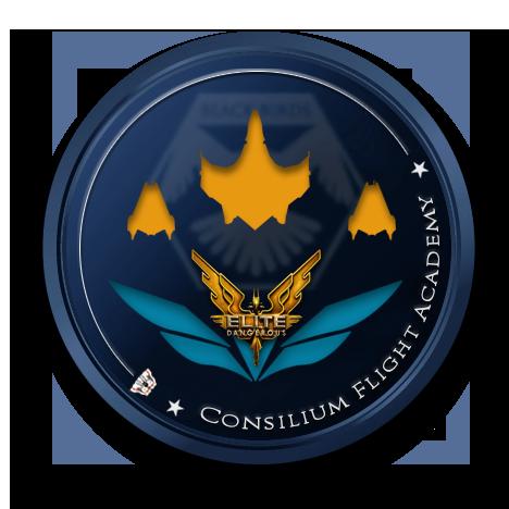 Consilium Flight Academy